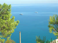 navi ormeggiate al largo - 2 ottobre 2007  - Castellammare del golfo (588 clic)