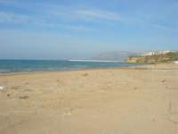 spiaggia di ponente - 15 marzo 2009   - Balestrate (3145 clic)