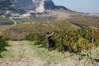 panorama dal colle Pianto Romano - 4 ottobre 2007   - Calatafimi segesta (850 clic)