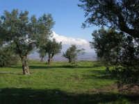 monte Erice: panorama - 28 settembre 2008    - Erice (873 clic)