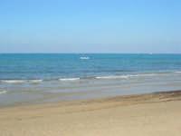 Spiaggia Plaja - il mare - 28 febbraio 2009   - Castellammare del golfo (1326 clic)
