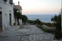 periferia del piccolo borgo - 19 settembre 2007  - Scopello (845 clic)