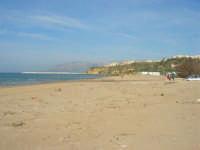 spiaggia di ponente - 15 marzo 2009   - Balestrate (3972 clic)