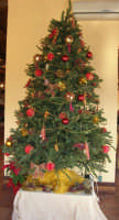 Albero di Natale - L'Agorà di Segesta - 14 dicembre 2008   - Segesta (4134 clic)