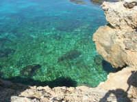 Golfo del Cofano: la scogliera e lo stupendo mare - 24 febbraio 2008   - San vito lo capo (528 clic)