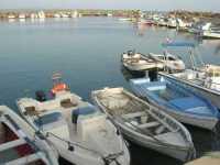 al porto - 17 maggio 2009   - Marinella di selinunte (1483 clic)