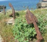 Tonnara - ancore - 22 maggio 2009  - Bonagia (1824 clic)