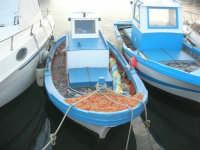piccole barche di pescatori al porto - 1 maggio 2008  - Trapani (1091 clic)