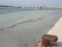 il porto, il faro  - 25 aprile 2006   - San vito lo capo (1254 clic)