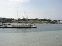il porto - 25 aprile 2006   - San vito lo capo (913 clic)