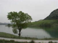 il lago - 17 aprile 2006  - Piana degli albanesi (1763 clic)