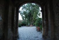 l'ingresso al Baglio Isonzo ed il grande albero al suo interno - 19 settembre 2007  - Scopello (918 clic)