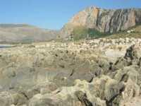 Golfo del Cofano - rocce e panorama dell'entroterra - 29 luglio 2009   - Custonaci (1820 clic)
