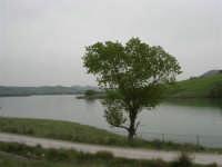 il lago - 17 aprile 2006  - Piana degli albanesi (1521 clic)