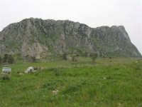 la rocca - 17 aprile 2006  - Piana degli albanesi (1699 clic)