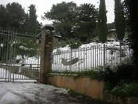 neve sul monte Bonifato - 15 febbraio 2009   - Alcamo (1820 clic)