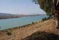 LAGO POMA - lago artificiale nei pressi di Partinico - 5 ottobre 2007  - Partinico (969 clic)