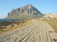 Golfo di Bonagia: lungomare e monte Cofano - 27 aprile 2008   - Cornino (997 clic)