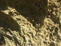 Golfo del Cofano - scoglio: particolare - 1 agosto 2009  - San vito lo capo (2494 clic)