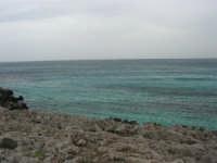 il mare spazzato dallo scirocco - 29 marzo 2009   - San vito lo capo (1848 clic)
