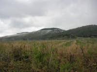 monte Bonifato - 15 febbraio 2009   - Alcamo (2422 clic)
