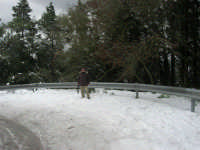 neve sul monte Bonifato - Riserva Naturale Orientata Bosco d'Alcamo - 15 febbraio 2009               - Alcamo (2262 clic)