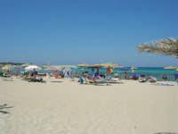 la spiaggia - 30 agosto 2008   - San vito lo capo (626 clic)