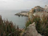 Spiaggia La Praiola - 23 settembre 2007  - Terrasini (1484 clic)