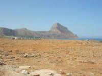Golfo del Cofano: paesaggio brullo, mare spettacolare - 23 agosto 2008  - San vito lo capo (478 clic)