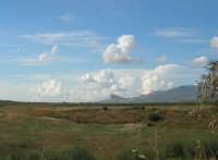 campagna agrigentina - 9 novembre 2008   - Ribera (2255 clic)