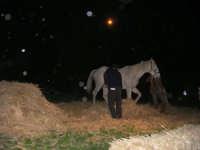Presepe Vivente - 26 dicembre 2008  - Balata di baida (4507 clic)