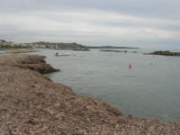 spiaggia ricoperta dalle alghe e mare calmo - 9 novembre 2008  - Ribera (1966 clic)