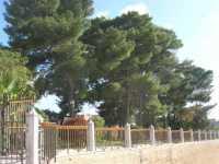 giardino pubblico - 4 ottobre 2009   - Partanna (2256 clic)