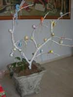 Istituto Comprensivo Pascoli - Aspettando la Pasqua, uova decorate crescono sugli alberi! - 7 aprile 2006   - Castellammare del golfo (1071 clic)