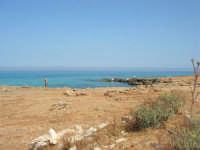 Golfo del Cofano: paesaggio brullo, mare spettacolare - 23 agosto 2008  - San vito lo capo (523 clic)