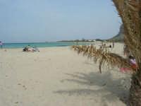 relax in spiaggia - 25 aprile 2006   - San vito lo capo (1953 clic)