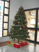 Albero di Natale - I.C. Pascoli - 17 dicembre 2008  - Castellammare del golfo (525 clic)