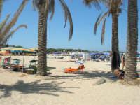 la spiaggia - 30 agosto 2008   - San vito lo capo (650 clic)