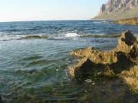 Golfo di Bonagia: scogli e mare - 27 aprile 2008   - Cornino (853 clic)