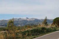 Caltabellotta vista dalle campagne di Ribera - 9 novembre 2008   - Caltabellotta (1475 clic)