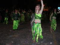 Carnevale 2008 - XVII Edizione Sfilata di Carri Allegorici - La zuppa di Darwin - Associazione Paparella - 3 febbraio 2008  - Valderice (944 clic)