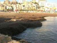 spiaggia invasa dalle alghe - 25 ottobre 2009   - Marinella di selinunte (1748 clic)