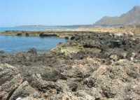 Golfo del Cofano: un mare stupendo! - 4 luglio 2009   - San vito lo capo (1416 clic)