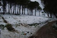 neve sul monte Bonifato - 15 febbraio 2009   - Alcamo (1968 clic)