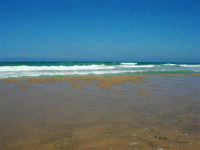 zona Canalotto: il fascino del mare mosso! - 3 agosto 2006  - Alcamo marina (1104 clic)