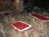 Il Presepe Vivente di Custonaci nella grotta preistorica di Scurati (grotta Mangiapane) (121) - 26 dicembre 2007   - Custonaci (916 clic)