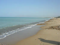 C/da Magazzinazzi - 2 novembre 2008  - Alcamo marina (674 clic)