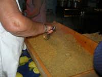 11° Cous Cous Fest - 26 settembre 2008  - San vito lo capo (582 clic)