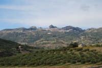 Caltabellotta vista dalle campagne di Ribera - 9 novembre 2008   - Caltabellotta (1157 clic)
