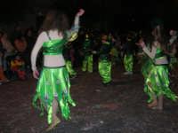 Carnevale 2008 - XVII Edizione Sfilata di Carri Allegorici - La zuppa di Darwin - Associazione Paparella - 3 febbraio 2008  - Valderice (1006 clic)
